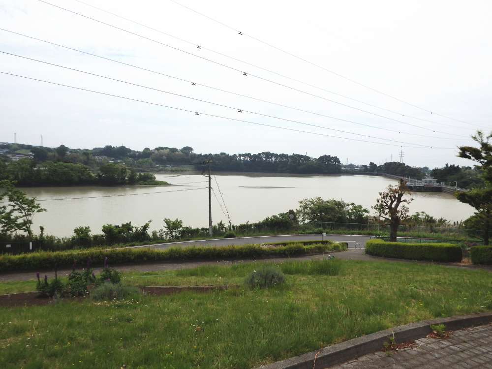 愛宕山ふるさと公園からの眺め
